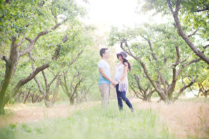 Maternity photo shoot in orchard.