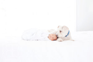 Newborn baby with his dog