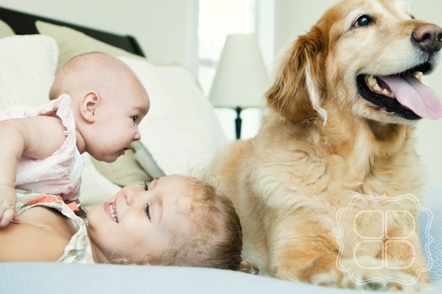 Dog watches over a baby girl and a child